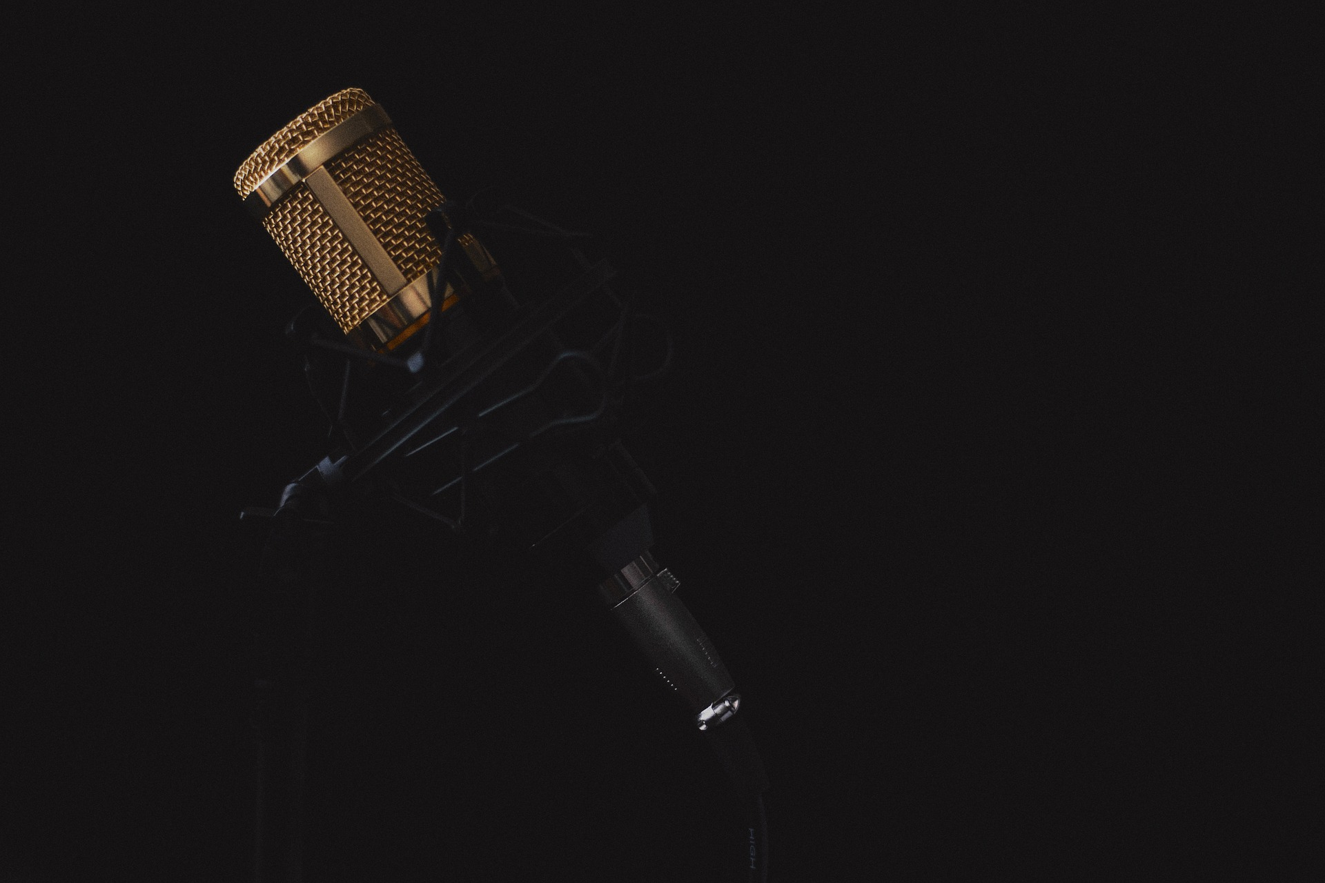 Gold colored microphone in stand.